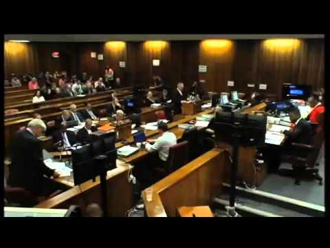 Pistorius Trial: Defence's ballistics expert Tom Wolmarans, proposes new theory