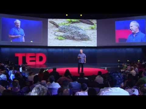 Mark Plotkin: What The People Of The Amazon Know That You Don't video