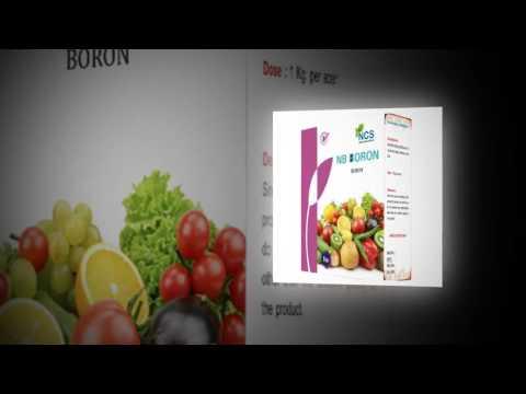 Biopesticides, Pesticides, Fertilizers By Noble Crop Science, Rajkot