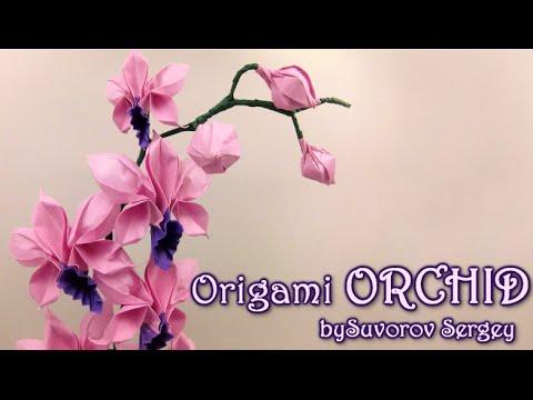 Best Origami Instructions Amazoncom