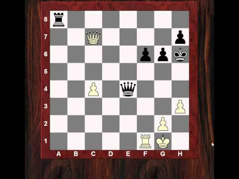 FORCING Chess moves! - Some thoughts about the docking computer concept (Chessworld.net)