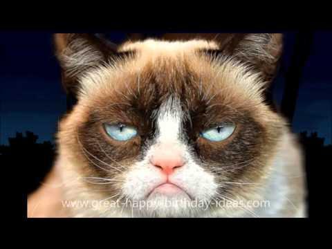 Funny Memes For Kids Animals : Happy birthday : cute animals mom dad kids free e card grumpy