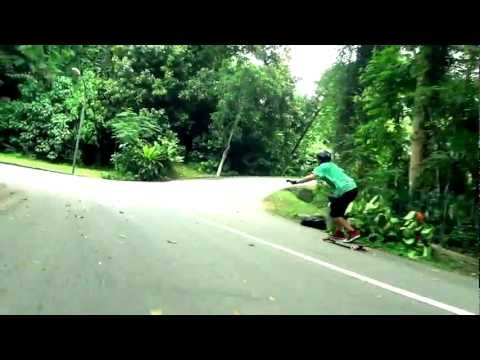 Longboarding: Freeriding Animals