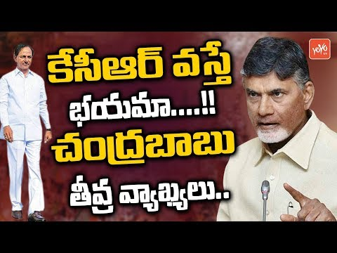 AP CM Chandrababu Comments on KCR Politics | Telangana | AP | YOYO TV Channel