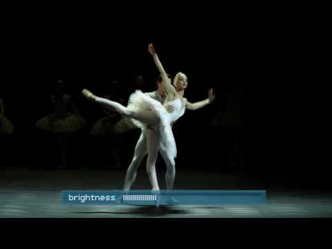 Loewe - Swan Lake Video
