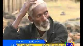 Ethiopian Amharic day news december 28, 2015