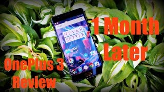 OnePlus 3 Review After 1 Month! Still Worth It?