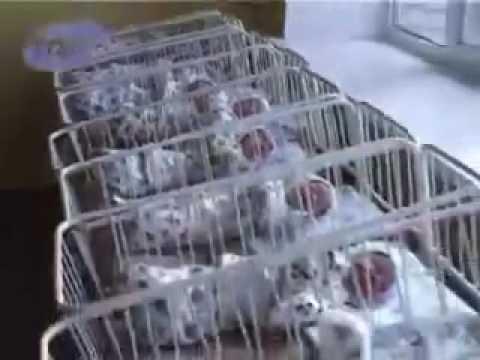 Женщина родила сразу 10 детей!