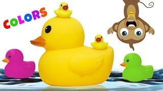 Cute Monkey Ducks Learn Colors Nursery Rhymes Kids Song for Kids Children Learning Educational Video