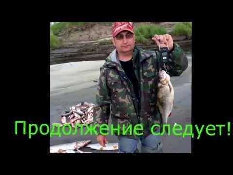 как ловить рыбу в каневе