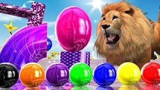 Learn Colour With Colourful Balls Lion  With Pipes Colour song || 3D Colours  Rhymes For Collection
