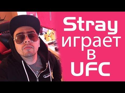 Stray играет в UFC