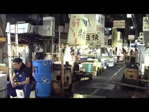 Tsukiji Fish Market in Tokyo :: Tuna Auction & Exotic Fish :: 築地市場 東京