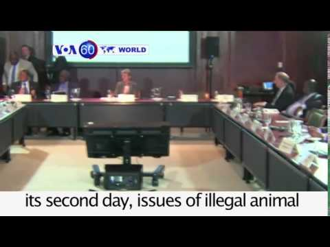 Rising tensions lead to a violent brawl in the Turkish parliament: VOA60 World 08-05