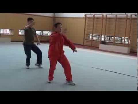 Tai Chi Training Ph.D Program in Shanghai Sport University 4 - Jesse Tsao