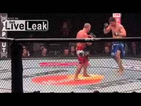 Wanderley Silva vs Brian Stann fist fight