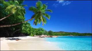 download lagu Mike Posner - I Took A Pill In Ibiza gratis