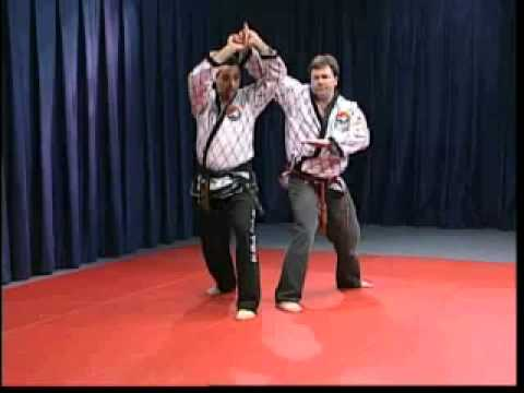Hapkido Basic Straight Techniques Image 1