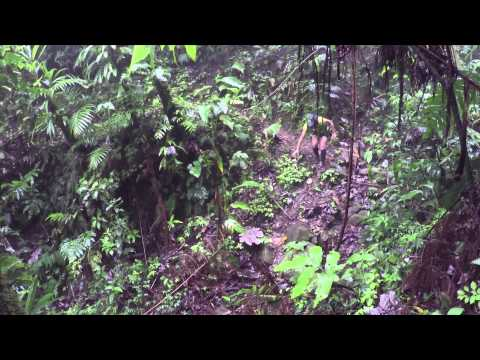 Nature Island Challenge 3.0 Day 1 Highlights (2015)
