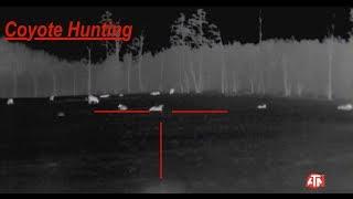 Coyote Hunting: THERMAL IMAGING- 2