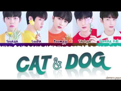 Download  TXT - 'CAT & DOG' s Color Coded_Han_Rom_Eng Gratis, download lagu terbaru