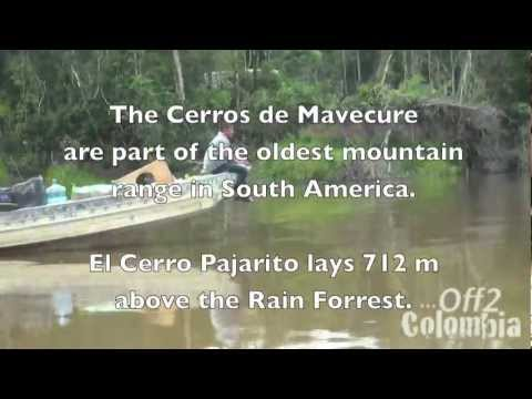 Cerros de Mavecure : The Crying Mountains!