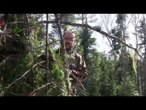 WWDO Episode 02 - The New Brunswick Bruiser