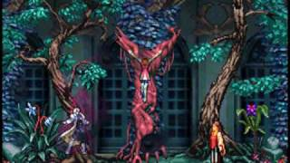 Castlevania: Dawn of Sorrow - The Dark Lord, Soma