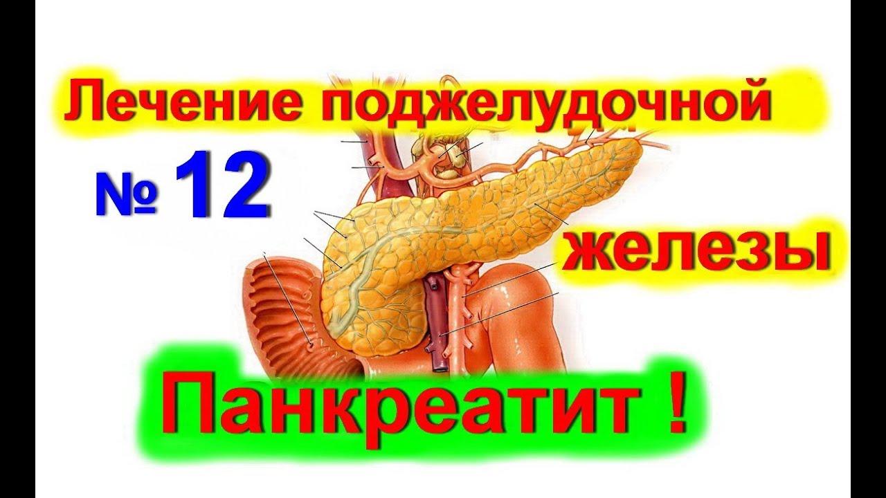 Как лечить поджелудочную железу в домашних условиях быстро отзывы 207