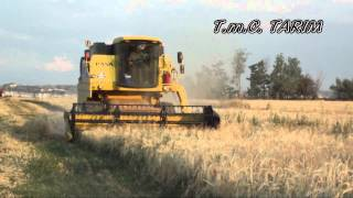 Barley Harvest 2012 -- New Holland TC 56