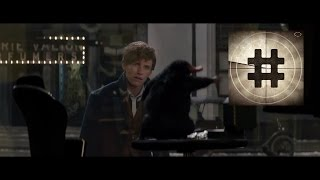 Fantastic Beasts and Where to Find Them Official Trailer 1 | 2016 1080p HD | Redmayne | TRAILERANK