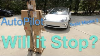 Will Tesla Stop For a Person ? #model3