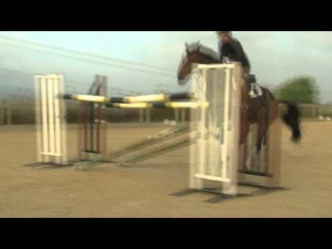 Matt Ryan talks about his Equestrian Direct experience