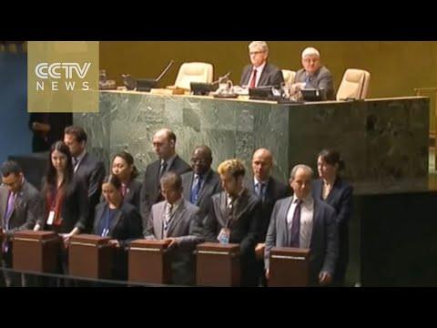 Egypt, Japan, Senegal, Ukraine and Uruguay join UN Security Council