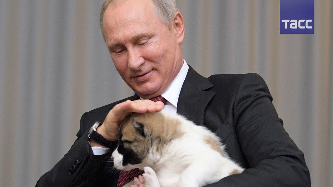 Студентки журфака МГУ подготовили Путину необычный подарок 13