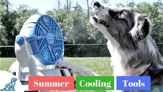 How To Keep Your Dog Cool In The Heat- Summer Cooling Gadgets!