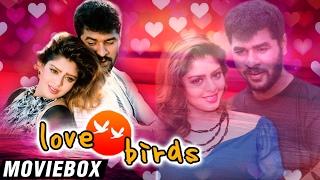 ❤ LOVE BIRDS Full Movie In A Song | Moviebox | Malargale Malargale | Prabhu Deva | Nagma ❤