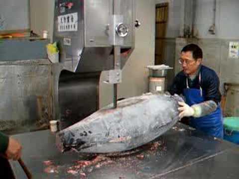 Tokyo Fish Market, slicing Tuna