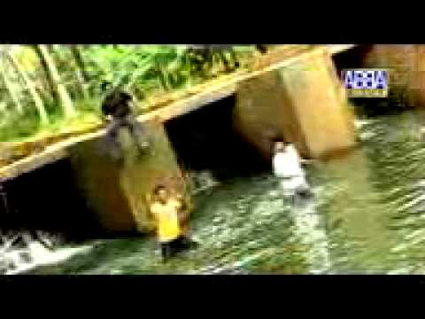 New 2011 Mappila Album  Comedy Song Gulfil Engum Pattayi By Aukrcha Kasaragod video