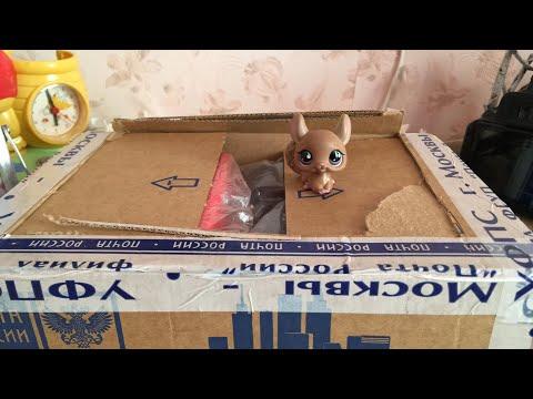 lps: распаковка посылки на трансляции