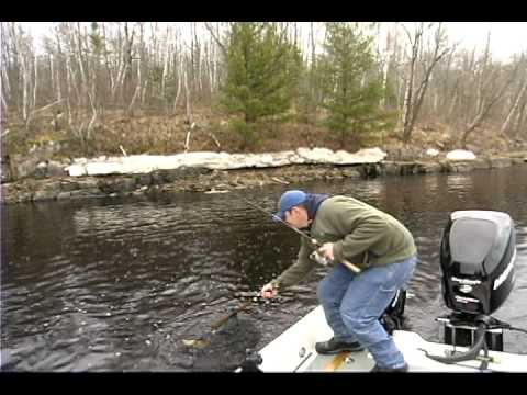 Wisconsin River Walleyes 2011