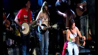Blackbird -Sharon Shannon