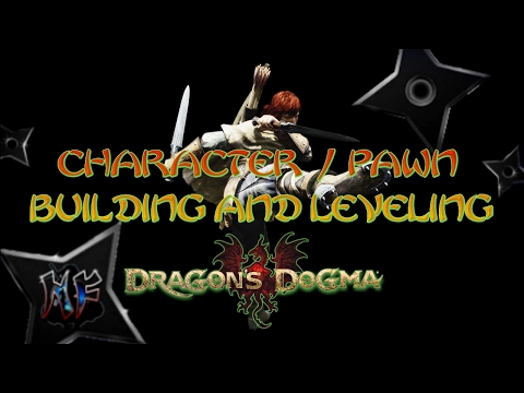 Dragon's Dogma Best Character / Pawn Build Guide