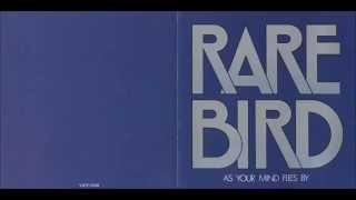 Watch Rare Bird What You Want To Know video