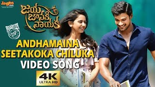 Andhamaina Seetakoka Chiluka Full Video Song | Bellamkonda Sreenivas | Rakul Preet | DSP