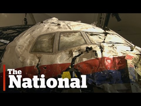 Flight MH17 was shot down by Russian-built missile