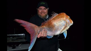 MEGA SNAPPER ON DELICIOUS  BAIT - YouFishTV