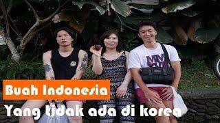 Download Lagu buah indonesia yang tidak ada di korea (feat. ibuku) , woo seok - 6 Gratis STAFABAND