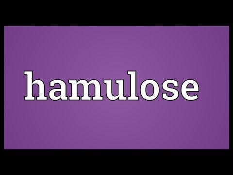 Header of hamulose