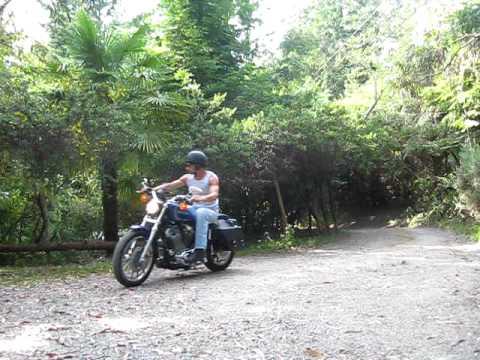 Harley Davidson 883 Custom Sportster